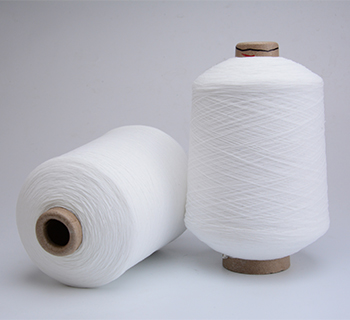 /आईएमजी/1207575_rubber_covered_yarn-24.jpg