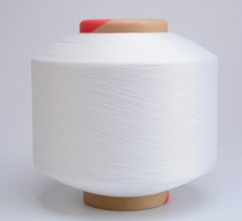 /img / 2040_nylon_covered_yarn-70.jpg