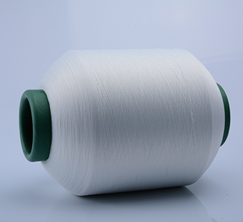 /img / 4075_polyester_capped_yarn.png